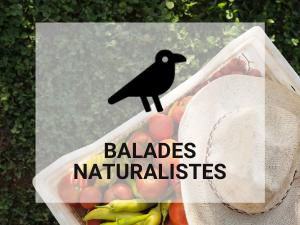 balades naturalistes